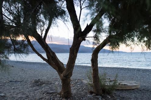 Crete #15 - Y