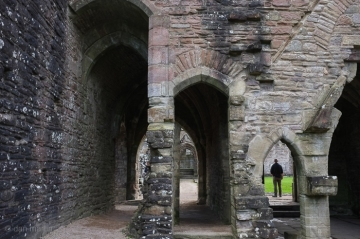 3 Arches
