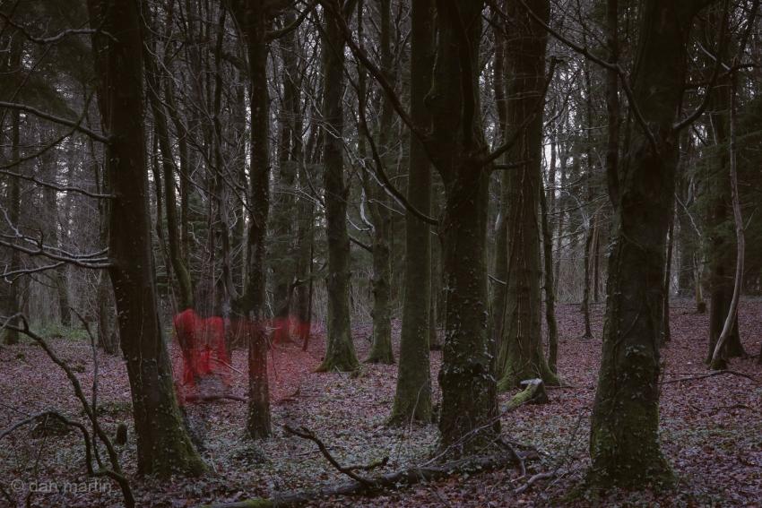 In Red, wandering. Stark.