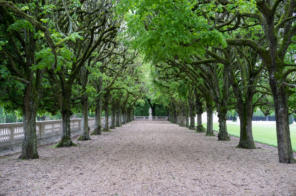 Part of the grounds around Château de Voisins, France