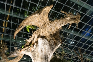 Cool driftwood style sculpture in the Flower Dome