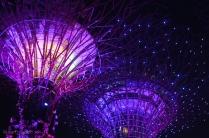 Super Trees lighting display