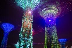 Supertree lighting display
