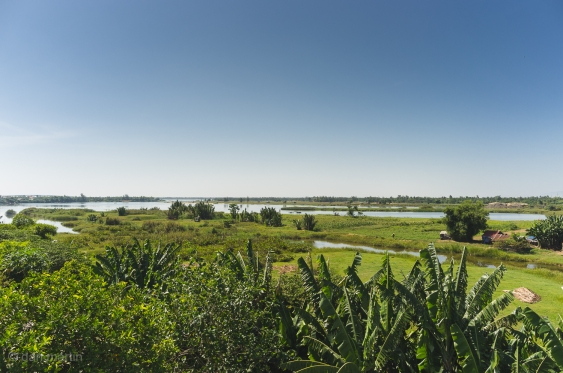 Overlooking the rice paddies and fields