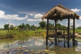Hut upon the pond