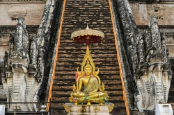 Gold Buddha in front of steps.