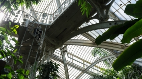 Kew Gardens #3