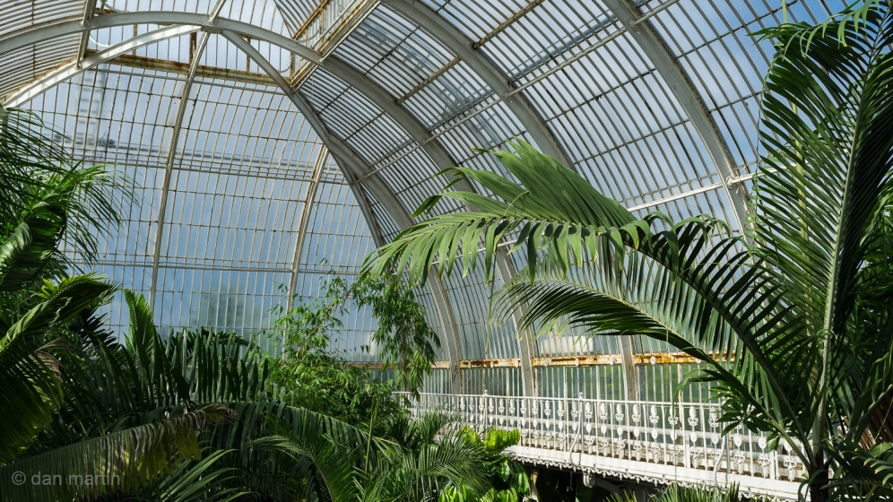 Kew Gardens, Palm House